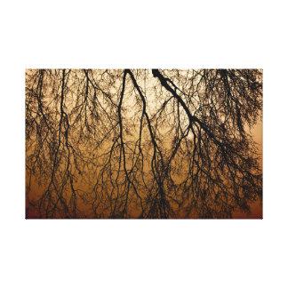 Beautiful Autumn Sunrise behind leafless Trees Canvas Print