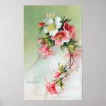 Beautiful Azaleas Vintage Art Print