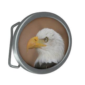 Beautiful Bald Eagle Oval Belt Buckles