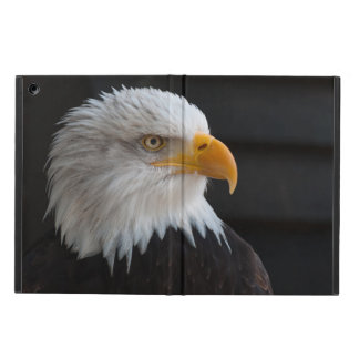 Beautiful bald eagle portrait iPad air cover