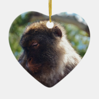 Beautiful Barbary Ape Christmas Ornament