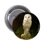 Beautiful Barn Owl Button Badge
