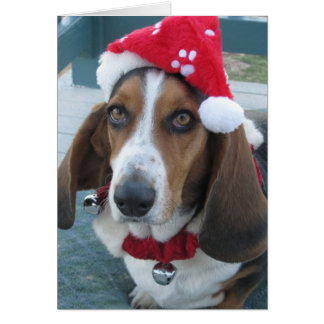 Beautiful Basset Santa Christmas Holiday Card