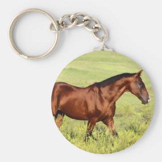 Beautiful Bay Horse Keychains