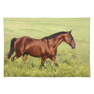Beautiful Bay Horse Placemat