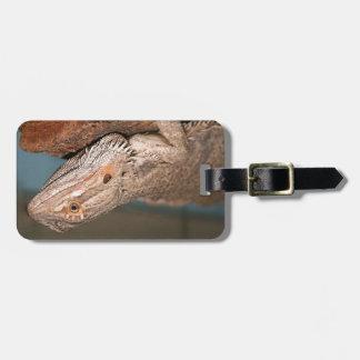 Beautiful Bearded Dragon Luggage Tag