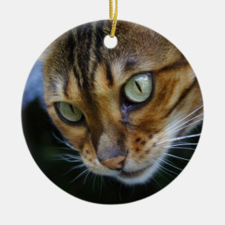 Beautiful Bengal Cat Christmas Ornament