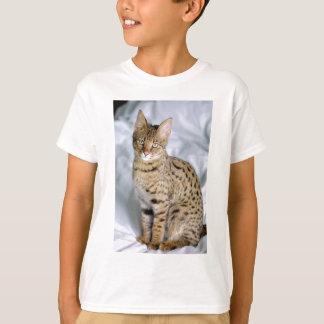 Beautiful Bengal Cute Cat Face T-Shirt
