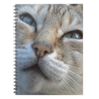 Beautiful Bengal Notebook