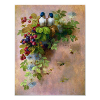 Beautiful Berry Vines and Blue Birds Poster