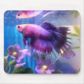 Beautiful Betta Mouse Mat