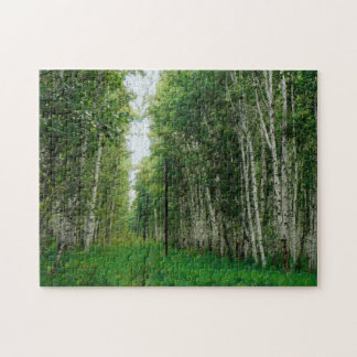 Beautiful Birch Tree Forest Puzzles