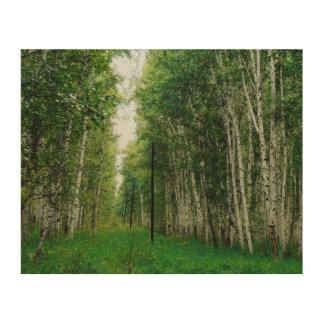 Beautiful Birch Tree Forest Wood Print