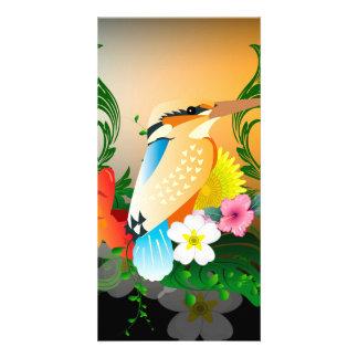 Beautiful bird photo card