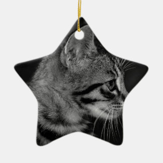 Beautiful Black and White Kitten Ceramic Star Decoration