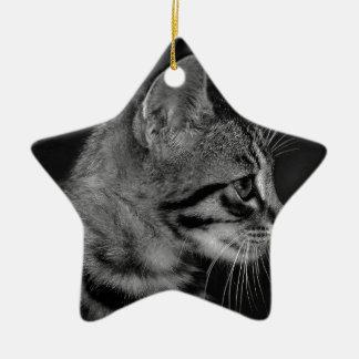 Beautiful Black and White Kitten Christmas Ornament