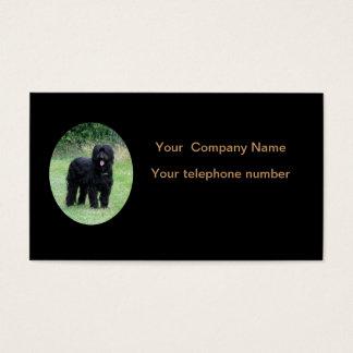 Beautiful black briard dog business card