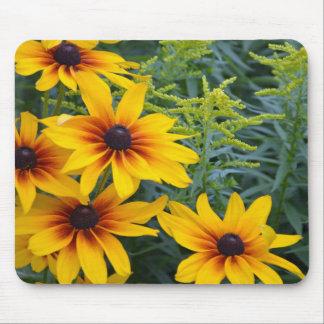 Beautiful black eyed susan flower garden mouse pad