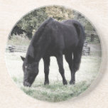 Beautiful Black Horse Beverage Coaster