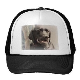 Beautiful Black Labrador Retriever Portrait Cap