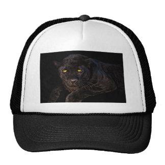 Beautiful black panther, cap mesh hat