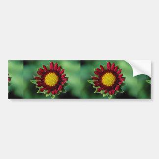Beautiful Blanket flower Bumper Sticker