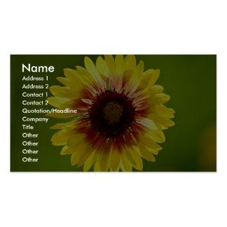 Beautiful Blanket flower, gaillardia aristata Pack Of Standard Business Cards