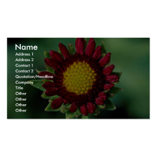 Beautiful Blanket flower Pack Of Standard Business Cards