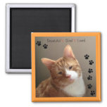 Beautiful Blind Loved Magnet
