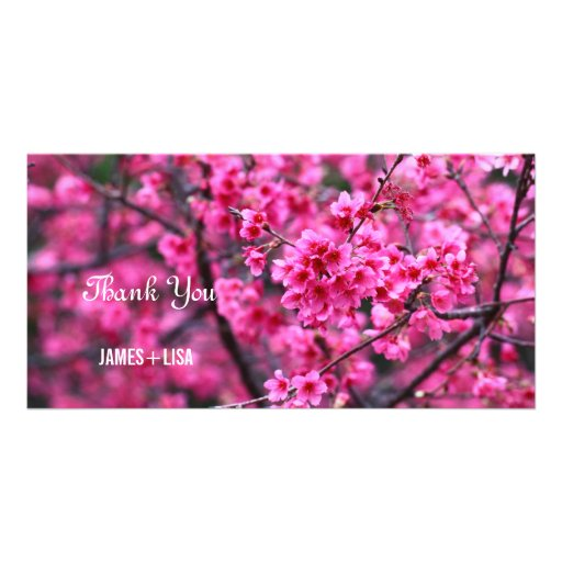 Beautiful Blossoming Sakura Flowers Custom Photo Card