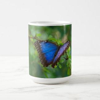 Beautiful Blue Butterfly Mug Mug