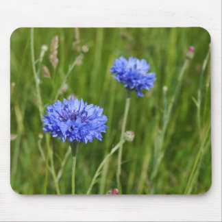 Beautiful Blue Cornflowers meadow flower design Mouse Mat