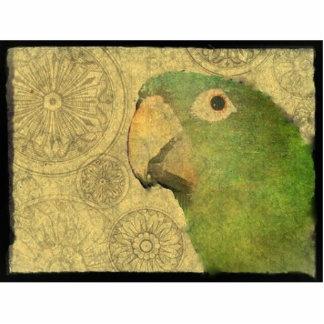 Beautiful Blue Crown Conure Parrot Photo Sculpture Magnet
