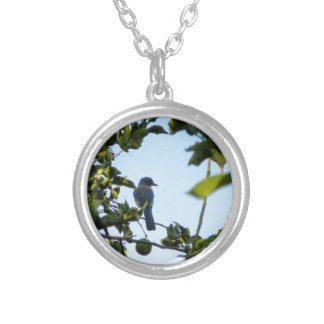 Beautiful Blue Jay Bird Silver Plated Necklace