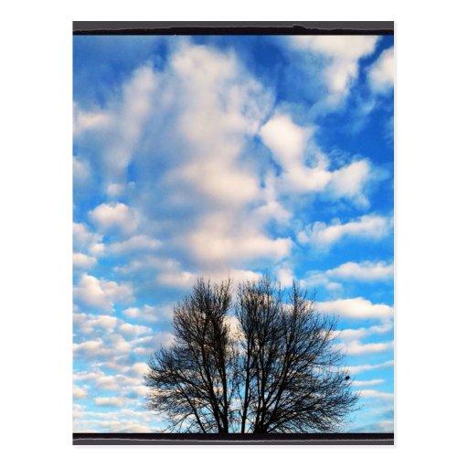 Beautiful blue sky fall by healing love post card