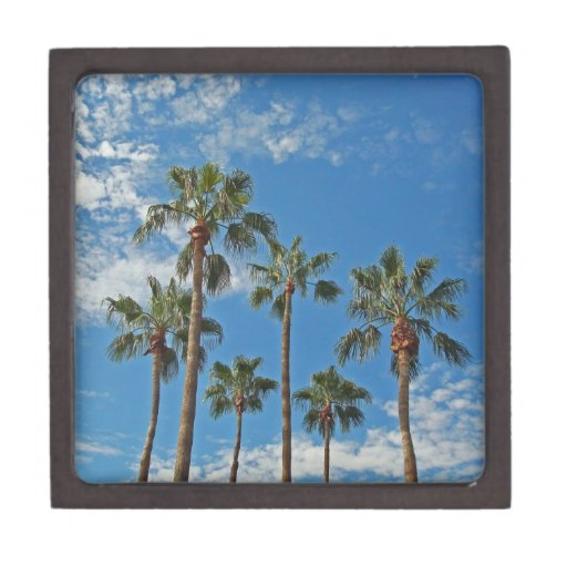 Beautiful Blue Sky with Tall Palm Trees Photograph Gift Box