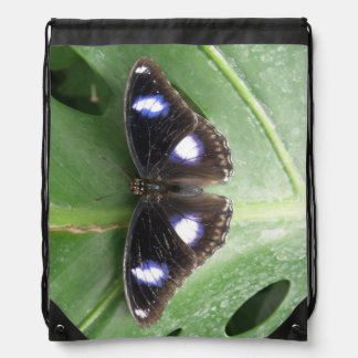 Beautiful Blue Spotted Butterfly Backpack