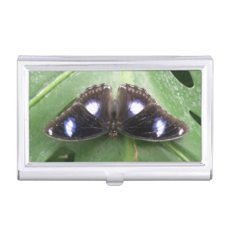 Beautiful Blue Spotted Butterfly Card holder