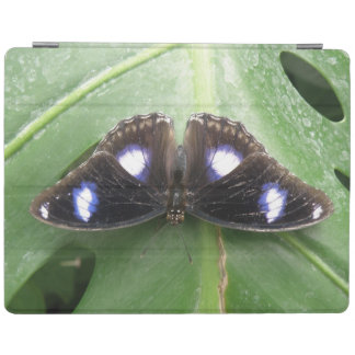 Beautiful Blue Spotted Butterfly iPad Cover