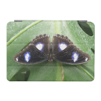 Beautiful Blue Spotted Butterfly iPad Mini Cover