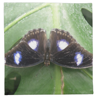 Beautiful Blue Spotted Butterfly Napkin