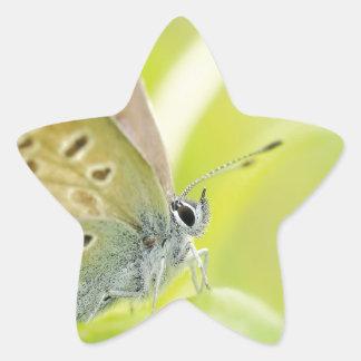 Beautiful Blue Spotted Butterfly Sticker