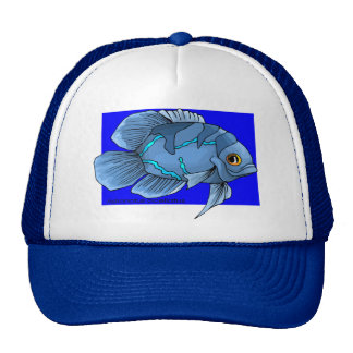 Beautiful Blue Tropical Oscar Fish Cap