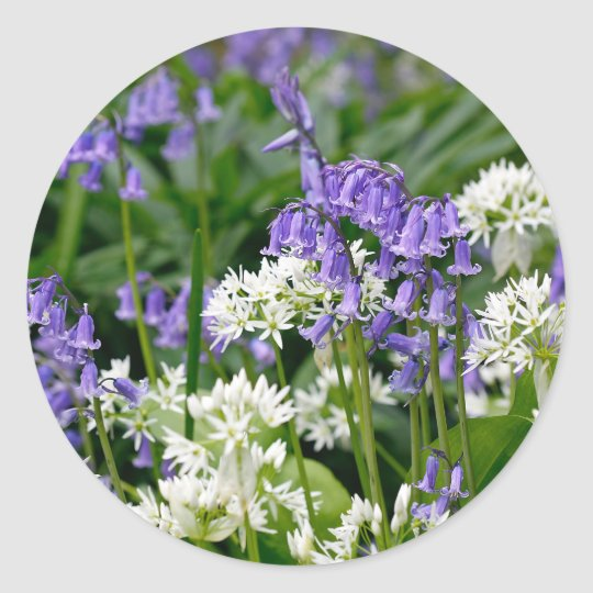 Beautiful Bluebells and Wild Garlic Round Sticker