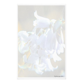 Beautiful Bluebells I Stationery