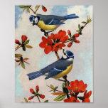 Beautiful Bluebirds Art Poster