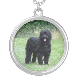 Beautiful briard dog necklace, pendant, gift idea silver plated necklace