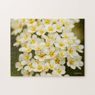 Beautiful Bridal Wreath Spiraea Puzzle