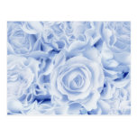Beautiful Bride in Blue, Rose Bouquet, template Post Cards