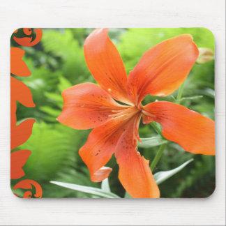 Beautiful Bright Orange Flowers Mousepad